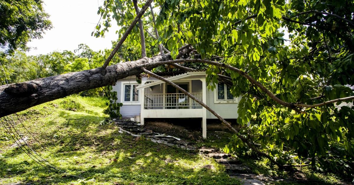 atlanta storm damage roof repair alpha roofing